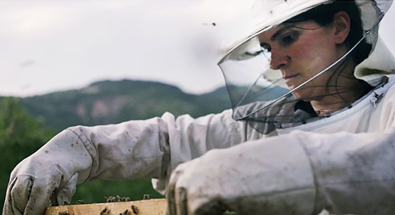 A close-up shot of a woman in a beekeeping suit as she is picking up a part of the hive with bees surrounding her hadns.