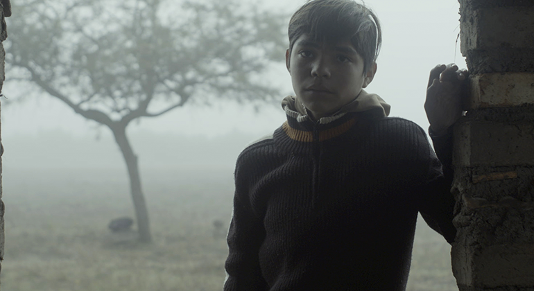 A young child leaning against the side of a brick wall, in front of a foggy landscape with a single tree.