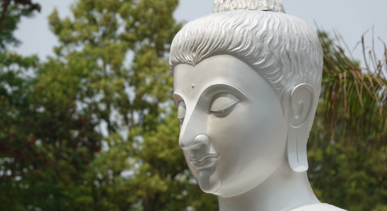 The head of a Buddhist statue