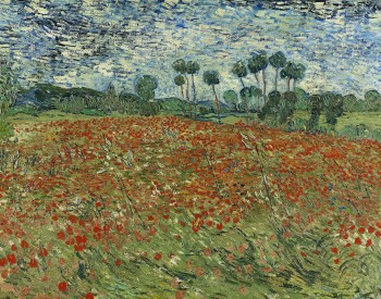 """Poppy Field,"" 1890, Vincent van Gogh, Dutch; oil on canvas. Gemeentemuseum Den Haag, Longterm Loan Cultural Heritage Agency of the Netherlands, 0332858."