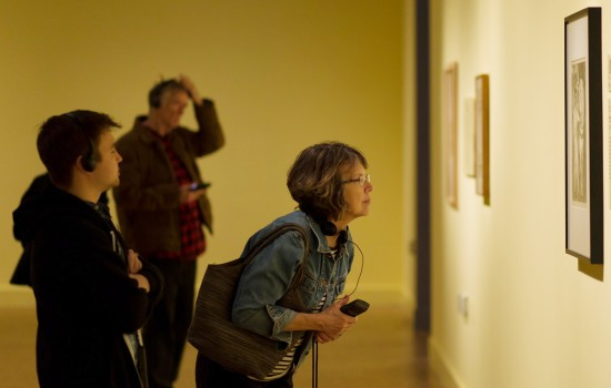 Patrons viewing art at the DIA