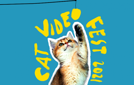 """A kitten reaching up to grab a toy which has been edited to be the O in the words """"Cat Video Fest 2021"""" which is scrawled on the blue background around the cat in yellow."""