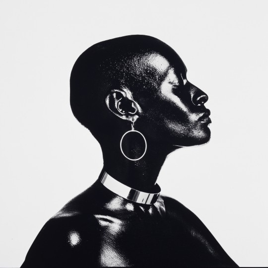 """Model Pat Evans,"" 1971, Anthony Barboza, pigment print. Detroit Institute of Arts"