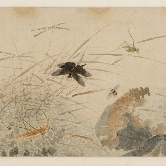 """Early Autumn,"" late 1200s–1300s, signed Qian Xuan, Ink and watercolor on paper. Detroit Institute of Arts"
